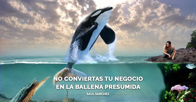 No conviertas tu negocio en la ballena presumida | Marketing Online